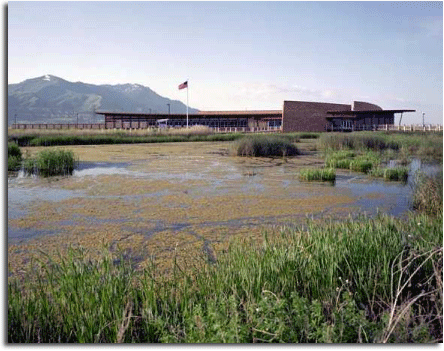 Bear River Bird Refuge